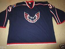 Cooper Johnston #31 Phoenix Firebirds USA Hockey Minor League Game Goalie Jersey