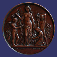 Beautiful Copper Agriculture Medal by Afred Borrell, Awarded 1886