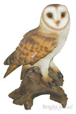 Vivid Arts - REAL LIFE BIRDS - Large Barn Owl