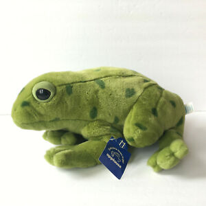 Applause Green Spotted Frog Large Soft Plush Stuffed Animal Toy 16""