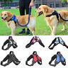 No Pull Dog Pet Vest Harness Strap Adjustable Nylon Small Medium Large XL Dog US
