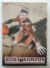 BODY WORLDS [DVD] Anatomical Exhibition of Real Human Bodies, Gunther von Hagens