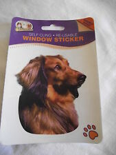 Sticker repositionnable - chien  TECKEL POIL LONG