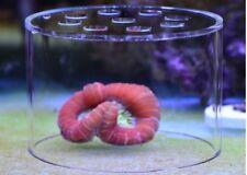 SPS Coral feeding Breeding protection cover, feeder coral food marine aquarium