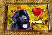 Newfoundland Gift Dog Fridge Magnet 77 x 51m Birthday Gift Xmas Stocking Filler