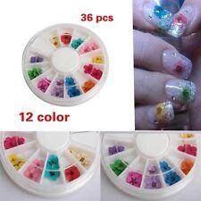 36Pcs 12 Color Dried Manicure Dry Flower 3D Nail Art Tips Decoration Wheel DIY