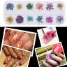 3D 12/1 Colors Real Dry Dried Flower for UV Gel Acrylic Nail Art Tips Decoration