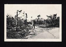 37685/ AK - 1. Weltkrieg - Schusswirkungen im Argonnenwald - (*)