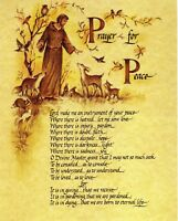 """Catholic print picture- PRAYER OF ST. FRANCIS 3  -  8"""" x 10"""" ready to be framed"""