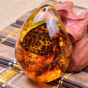 Beautiful Butterfly Amber Resin Amber Butterfly Insect Stone Pendant Necklace t