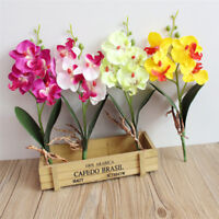 4 Head Artificial Silk Flower Butterfly Orchid Phalaenopsis Wedding Party Decor