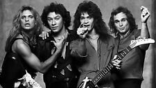 Van Halen (B/W) POSTER 24 X 36 Inches Looks great