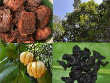 Ceylon A GRADE Garcinia gummi-gutta / Garcinia Cambogia - Goraka medicinal /food