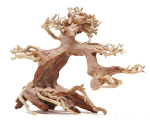 Aquarium Driftwood Bonsai Tree Quince Aquascape Fish Planted Freshwater ASX R...
