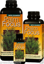 PALM FOCUS  1 Litre  Nutrients for Palm Trees ,Free Pippet