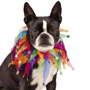 Aria Puppy Pride Dog Scrunchy Pet Scrunchies Rainbow Gay Lesbian collar