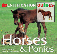Horses & Ponies: Identification Guide by Cecilia Fitzsimons, David Burn (Paperba