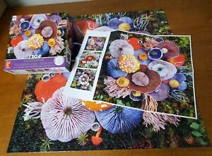 Ceaco Mushrooms 750 pc jigsaw puzzle - 2017 Jill Bliss Complete with poster
