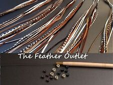 Feathers Hair Extensions Kit Lot 10 Grizzly Solid saddle long Natural NB KIT