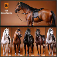 """Mr.Z 1/6 Germany Hannover Horse Hanoverian Animal  Model Scale 12"""" Action Figure"""