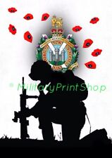 Kings Own Scottish Borderers  KOSB, Poppy Print.