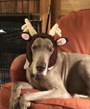 Handmade XXLarge Sized Reindeer hat Lurcher~Greyhound + other breeds