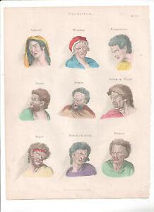 1866 Hand Coloured Engraving  Passions, Buffon, Natural History