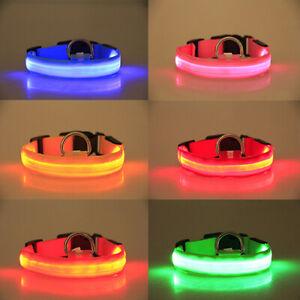LN_ USB Rechargable LED Flashing Luminous Light Up Nylon Safety Dog Pet Collar