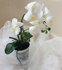 """PHALENOPSIS ORCHID PLANT- """"REAL TOUCH"""" -2 stem  in tin pot.- (1) - White"""