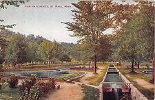 Minnesota postcard St. Paul Fish Hatcheries 1911