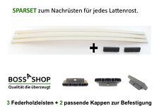SET   3 Federholzleisten (8 x 25 mm x Wunschlänge) + 2 Trio Kappen