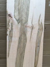 2x 10 AD Ambrosia Maple Beetle Striped Wormy Maple Table Top Bench Resaw Craft