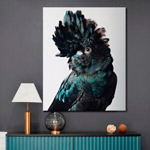 STRETCHED PRINTS ON CANVAS  COCKATOO ART PRINT FRAMED HOME DECOR ARTWORK BIRD