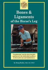 Bones and Ligaments of the Horse's Leg (DVD)