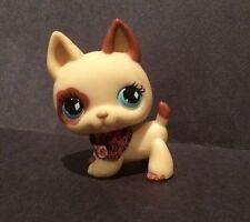 Littlest Pet Shop LPS Cream Tan SHEPHERD #744 Blue Diamond Eyes Dog Hasbro 100%