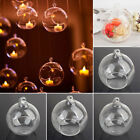 6-12cm Succulent HANGING GLASS BAUBLE SPHERE BALL CANDLE TEA LIGHT HOLDER VASE