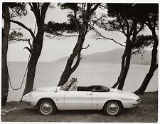 Alfa Romeo Giulia 1600 Spider Duetto, by Pinninfarrina - Photo Vintage 1966