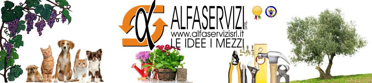 ALFASERVICE-STORE