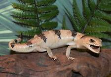 "Real Taxidermy High Quality Lifelike 9-3/4"" Peters Banded Skink Reptile Lizard A"