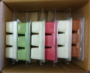 Wax melt gift set 6 Christmas scents 100% Soy wax max scented Free Shipping
