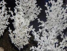 SET 5 Snow TREES Gorgeous SNOW FLOCKED, CHRISTMAS Village Display Dept 56
