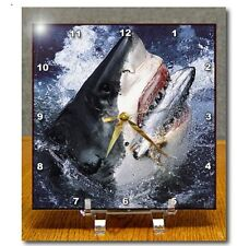 "Clearance! 3dRose dc_10588_1 Desk Clock, Great White Shark 6"" x 6"" - Ambx02O"
