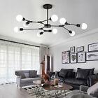 Black Chandelier Lignting Modern Ceiling Lights Large Pendant Light Kitchen Lamp