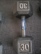 Cap Barbell 30 Pound Dumbbell Pounds Cast Iron Hex Weight Single (B)