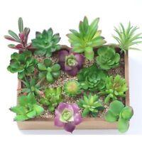 Artificial Succulents Plants Garden Miniature Fake Cactus DIY Home Floral Decor