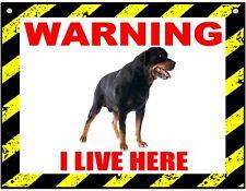 Warning I Live Here - Rottweiler - Dog - Metal Sign For Indoor or Outdoor
