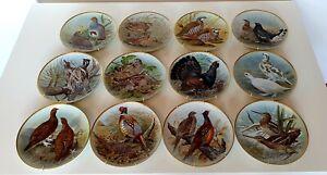 12 Limoges Porzellan Teller Wildvögel der Welt von Basil Ede limitiert 1979 Top