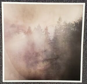 Twin Peaks Limited Event Series NUMBERED 2017 CARDBOARD PROMO POSTER FLAT