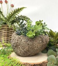 Rustic Lava Concrete Style Garden Planter Bowl Flower Herb Pot Wedding Table