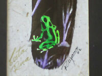 Unique Original Painting on Feather green toad frog Artist signed 02 Costa Rica